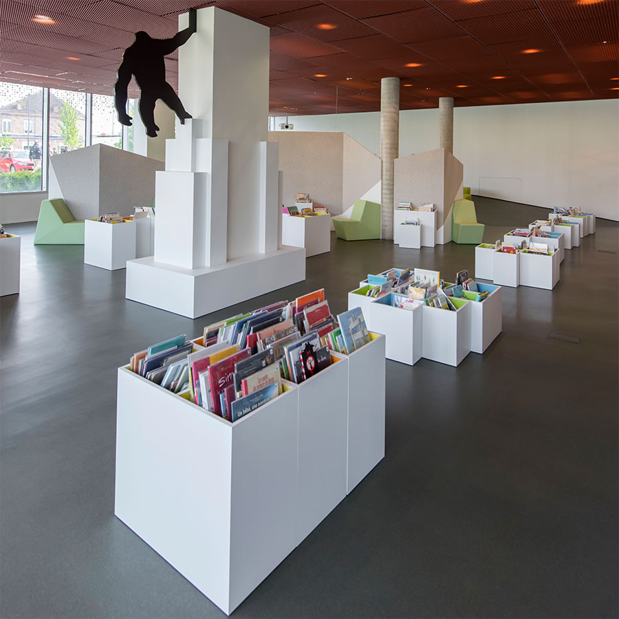 IDM Library - Médiathèque Carvin King Kong - Bac livres enfant