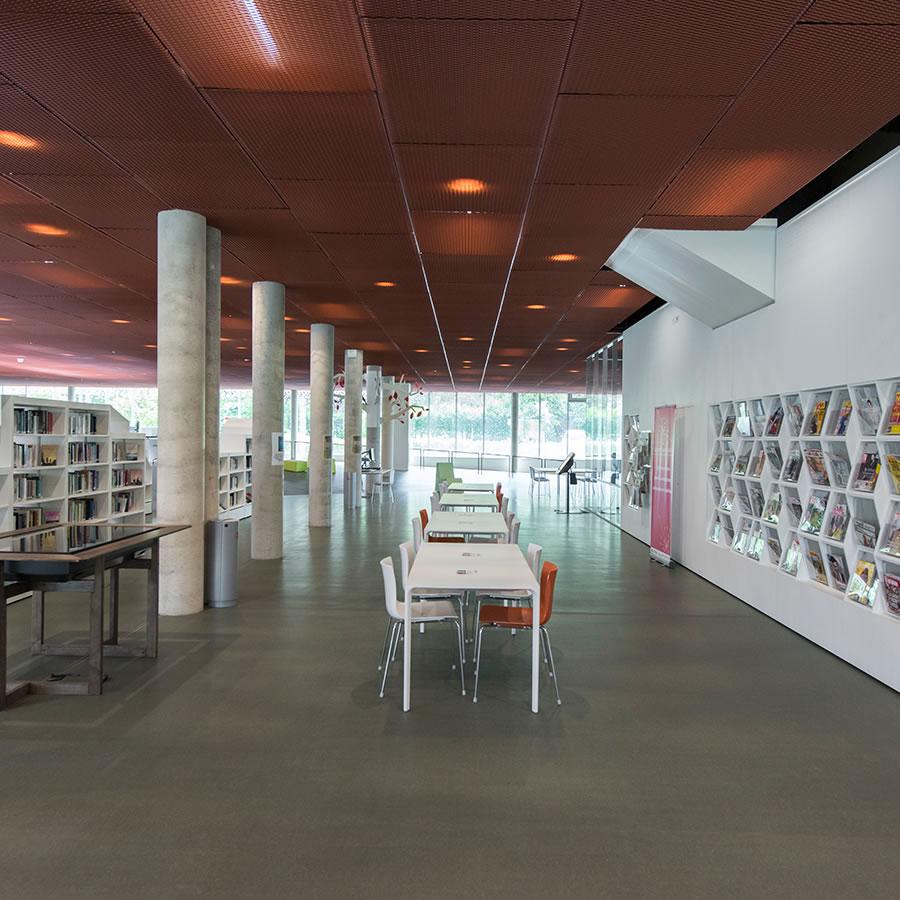 IDM Library - Médiathèque Carvin - Périodique rangement mural de livres