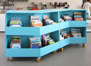 IDM Library - Bacs